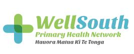 Well South NZ Logo