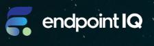 Endpoint IQ Logo